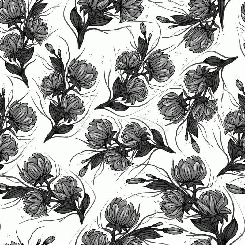 Картина винтажного monochrome черного графика искусства флористическая безшовная с белыми розами и пионами изолированными на бело бесплатная иллюстрация