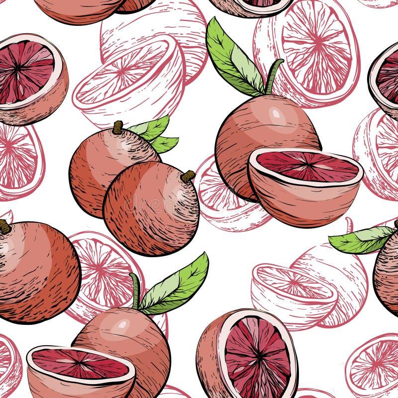 Картина грейпфрута Безшовная предпосылка Предпосылка цитрусовых фруктов сочная Картина цитруса безшовная с грейпфрутом иллюстрация штока