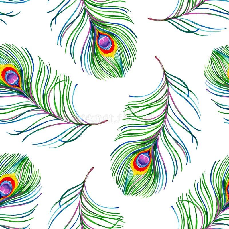 Картина гуаши безшовная экзотическая с красочными пер павлина иллюстрация штока
