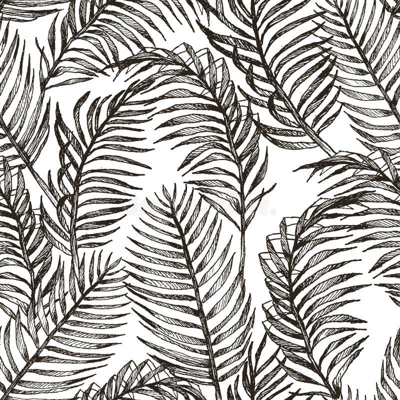 Картина джунглей троповых заводов флористическая безшовная Предпосылка вектора печати ладони обоев лета моды выходит в черноту бесплатная иллюстрация