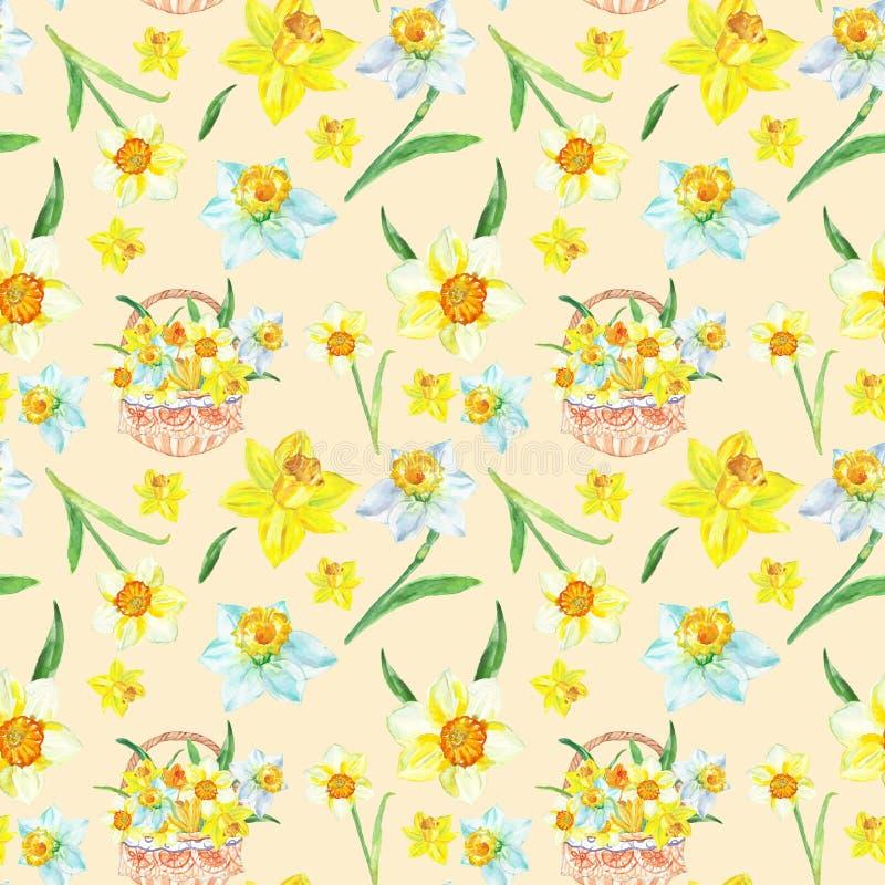 Картина желтого narcissus весны акварели безшовная Рука покрасила предпосылку цветков daffodils бесплатная иллюстрация