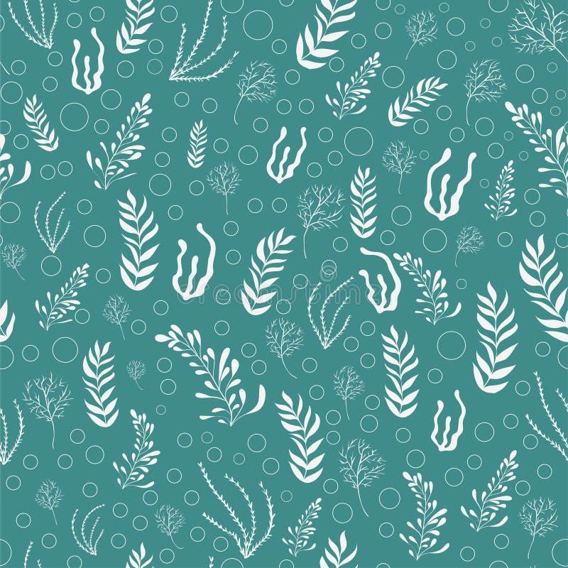 Картина заводов моря руки вычерченная безшовная Белая морская водоросль на предпосылке бирюзы иллюстрация вектора