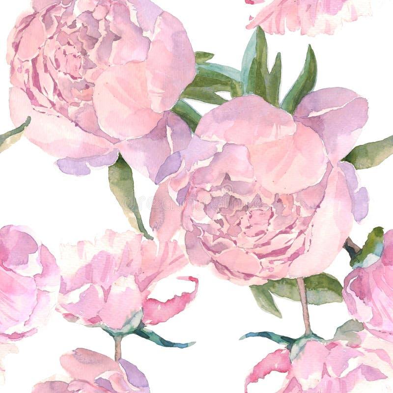 Картина затрапезного шикарного винтажного пиона безшовная, классическая флористическая предпосылка повторения для сети и печать Ч бесплатная иллюстрация