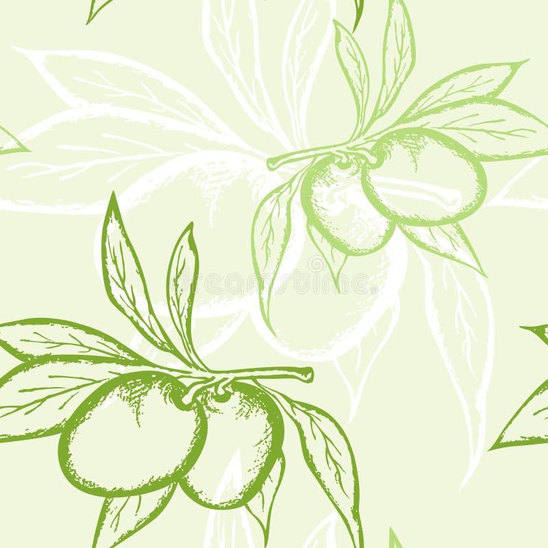 картина зеленой оливки безшовная иллюстрация штока