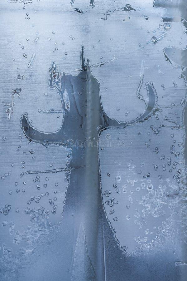 Картина зимы морозная подобная как дерево или кактус стоковые изображения rf