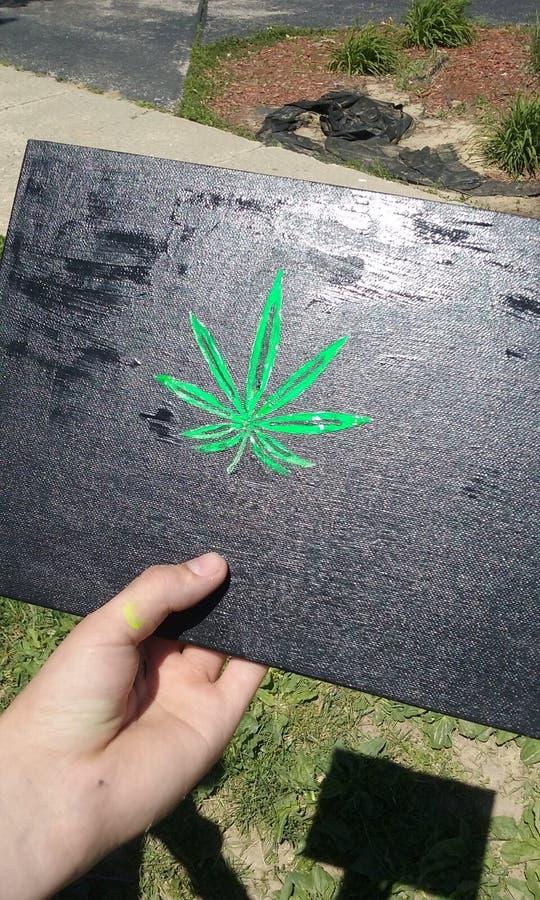 Картина лист бака стоковые изображения