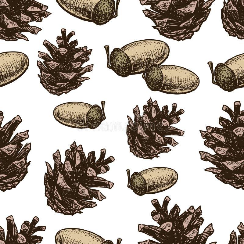 Картина конусов и жолудей сосны иллюстрация вектора