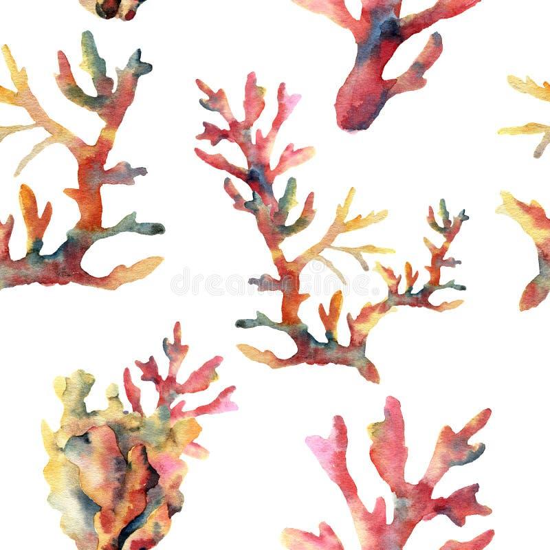Картина коралла акварели безшовная Вручите покрашенный орнамент при подводные ветви изолированные на белой предпосылке тропическо иллюстрация штока