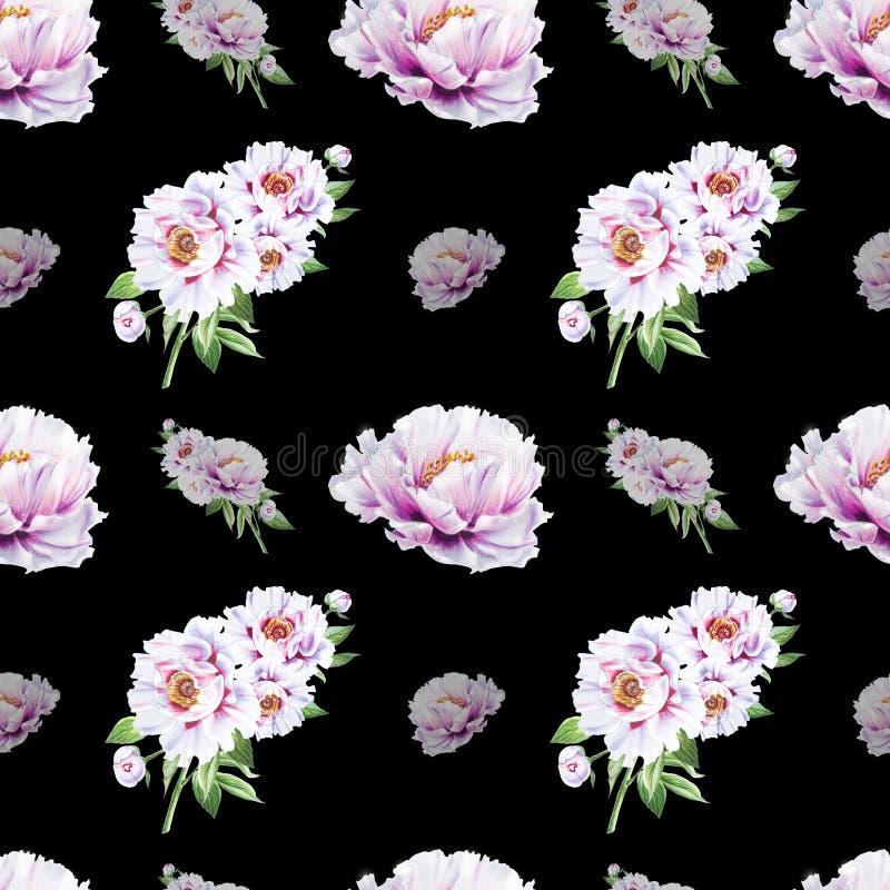 Картина красивого белого пиона безшовная E Флористическая текстура Чертеж отметки стоковые фотографии rf