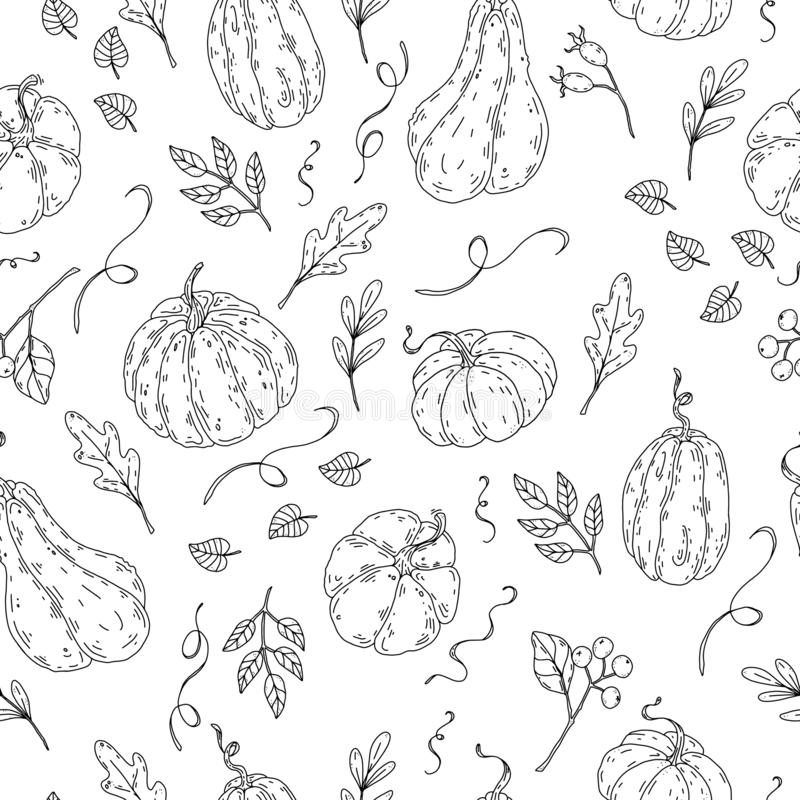 Картина красивого благодарения хеллоуина тыквы безшовная бесплатная иллюстрация