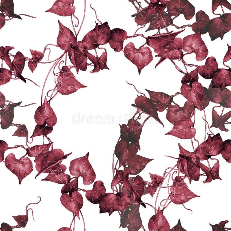 Картина красная, картина акварели розового красочного плюща листьев безшовная на белой предпосылке Trop дерева иллюстрации руки а иллюстрация вектора