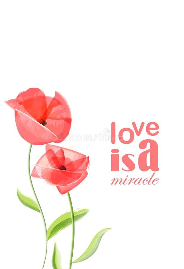 Картина красного цветка мака романтичная бесплатная иллюстрация