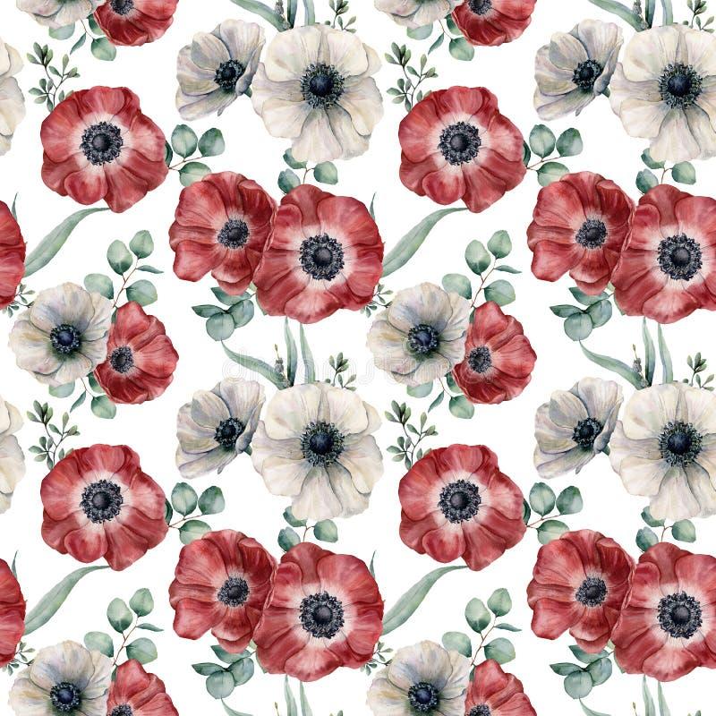 Картина красной и белой ветреницы акварели безшовная Вручите покрашенные цветки colorul, листья евкалипта изолированные на белизн стоковое фото rf