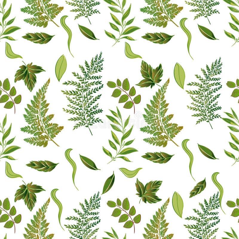 картина леса травянистая безшовная стоковое изображение