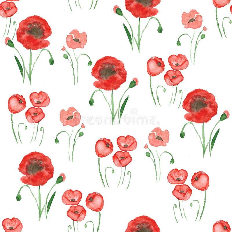 Картина луга мака безшовная Милые красные маки на белой предпосылке красивейшая флористическая картина самана коррекций высокая к бесплатная иллюстрация