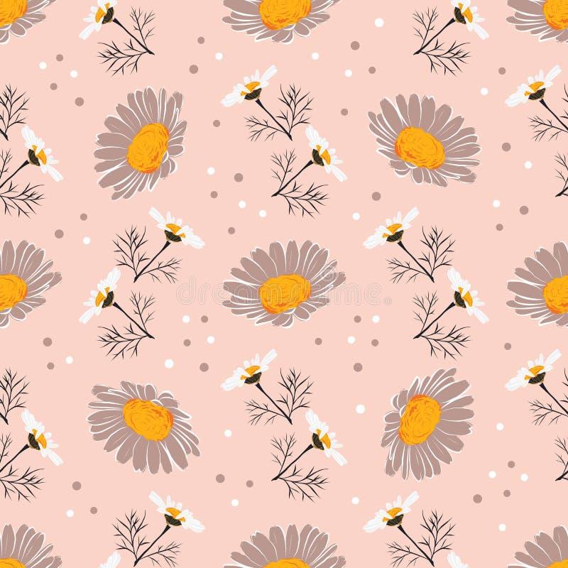 Картина маргаритки безшовная, предпосылка стоцвета Цветки и листья маргариток на нежной розовой предпосылке Картина вектора иллюстрация штока