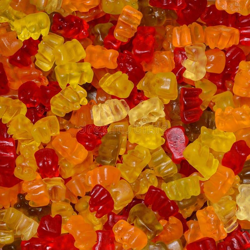 Картина медведей конфеты стоковое фото