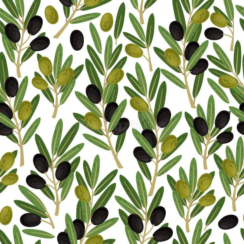 Картина оливок безшовная Оливковые ветки с текстурой вектора зеленого цвета природы ягод и листьев на белой предпосылке иллюстрация штока