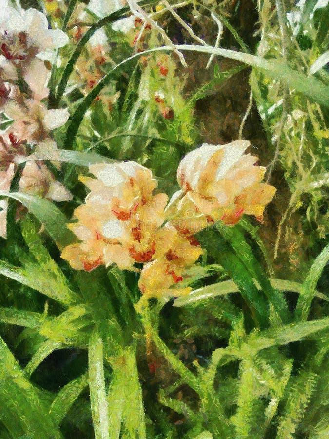 Картина орхидеи стоковое изображение rf