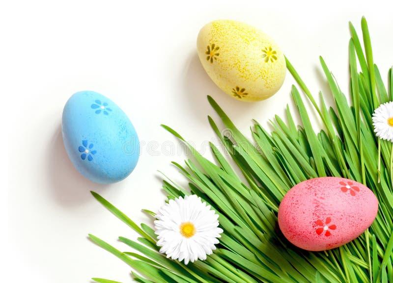 Картина пасхи eggs с маргариткой на свежей зеленой траве стоковые фотографии rf