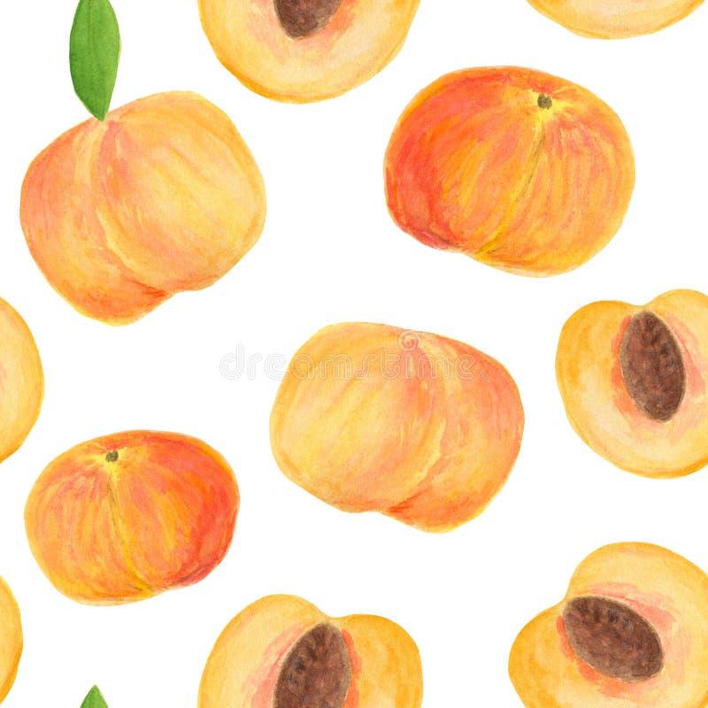 Картина персика акварели безшовная Части руки вычерченные плодов изолированных на белой предпосылке для дизайна упаковки еды, пок иллюстрация вектора