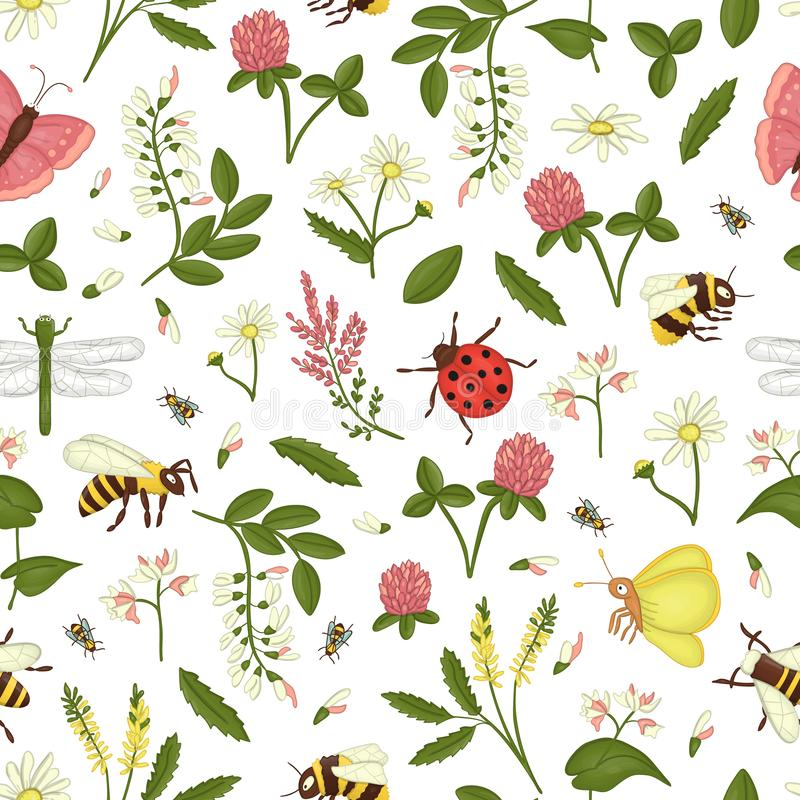 Картина полевых цветков, пчела вектора безшовная, шмель, dragonfly, ladybug, сумеречница, бабочка иллюстрация штока