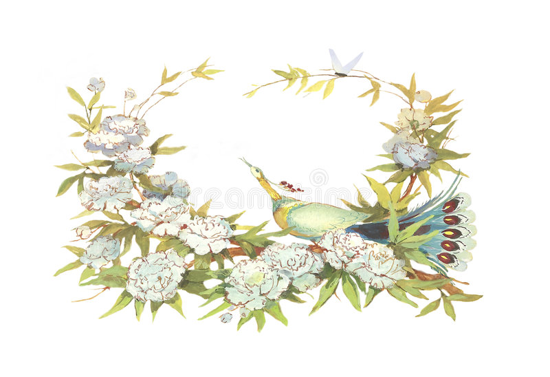 Download картина приветствию карточки Иллюстрация штока - иллюстрации насчитывающей peafowl, индия: 6869588