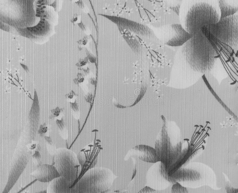 Картина ретро шнурка флористическая безшовная на Monotone черно-белой винтажной предпосылке ткани стиля стоковое фото