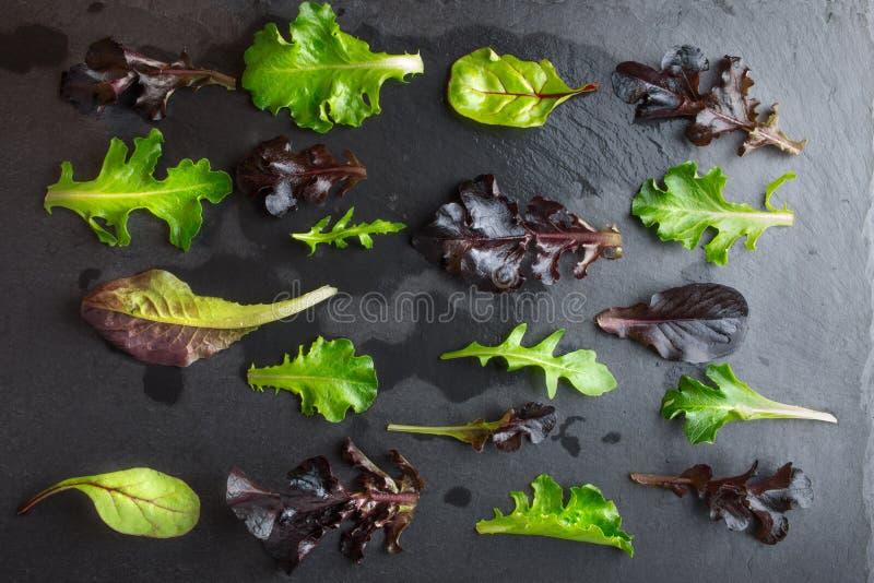 Картина салата салата на темной текстурированной предпосылке стоковая фотография rf