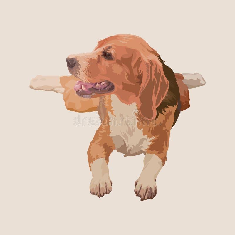 Картина собаки бигля цифровая, милая иллюстрация вектора