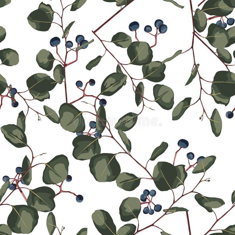 Картина стиля акварели флористическая безшовная с евкалиптом Вручите покрашенную картину с ветвями и листьями серебряного доллара бесплатная иллюстрация