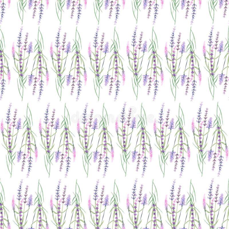 Картина с лавандой иллюстрация вектора