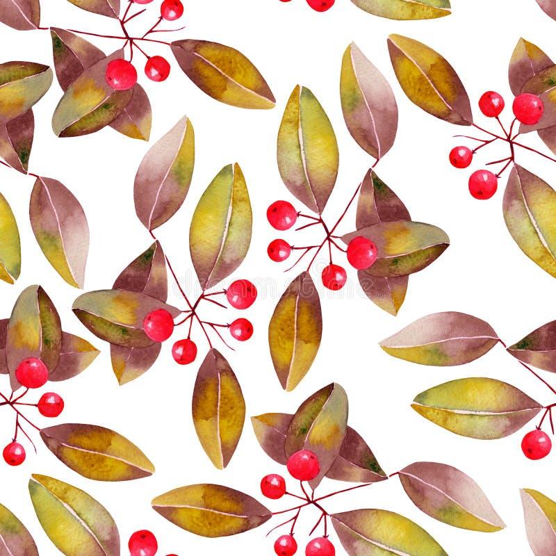 Картина с акварелью разветвляет с красными ягодами и листьями, деревом птиц-вишни бесплатная иллюстрация