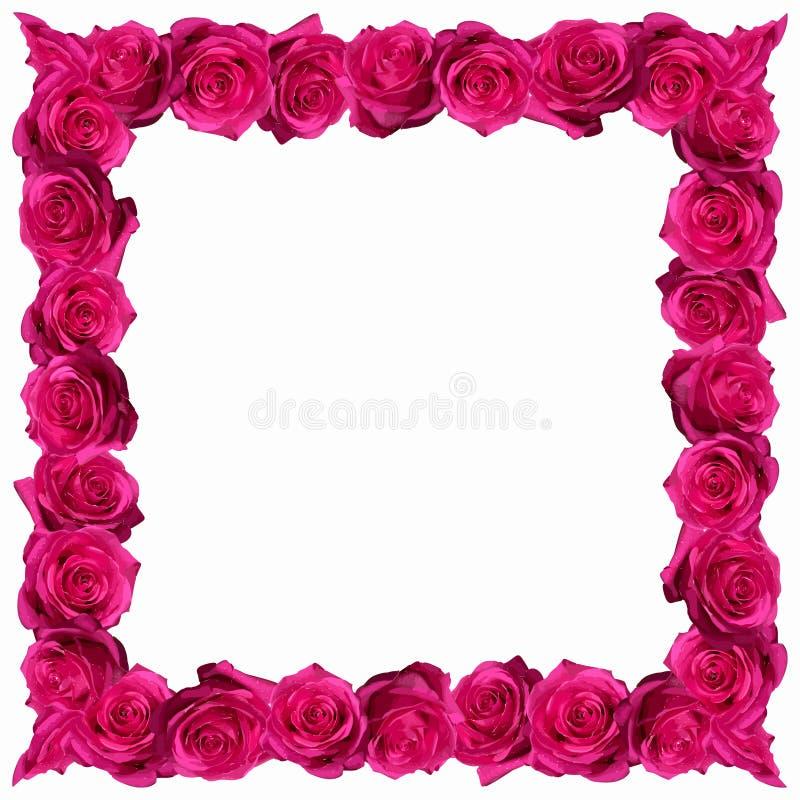 Картина с красными розами стоковое изображение rf