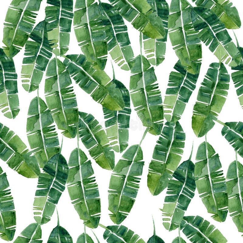 Картина тропических листьев акварели безшовная стоковые изображения