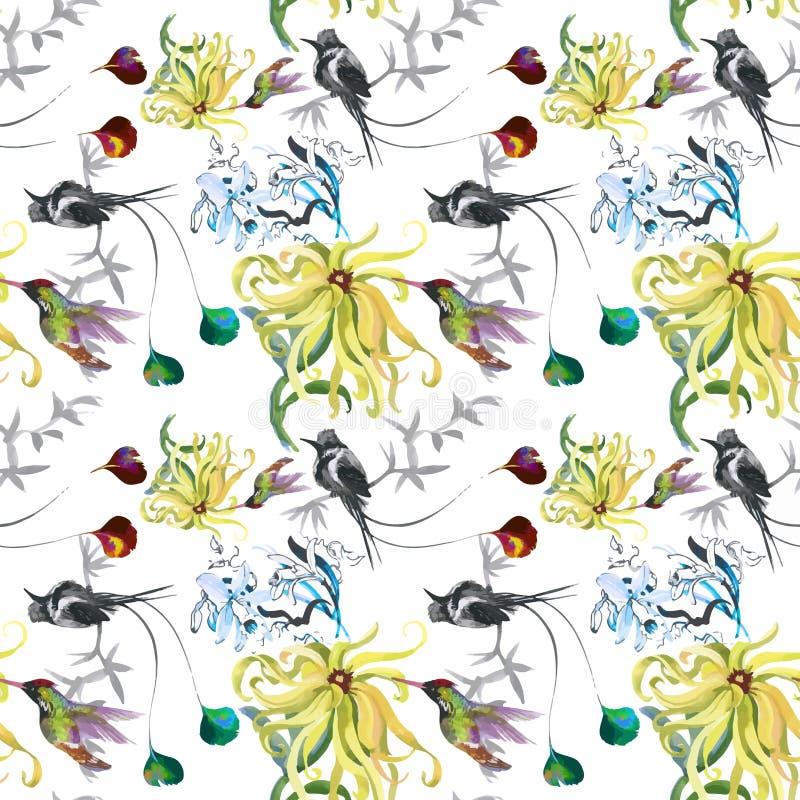 Картина тропической флористической акварели безшовная с colibris и цветками самана коррекций высокая картины photoshop качества р иллюстрация вектора
