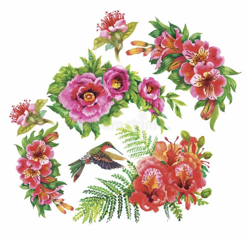 Картина тропической флористической акварели безшовная с colibris и цветками самана коррекций высокая картины photoshop качества р бесплатная иллюстрация