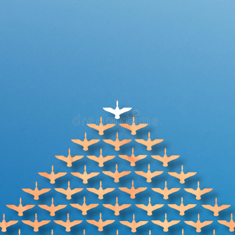 Картина утки водительства стоковая фотография rf