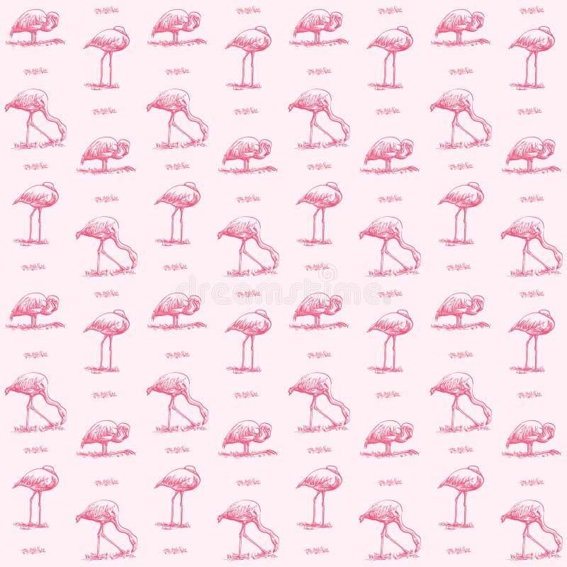 Картина фламинго стоковое фото rf