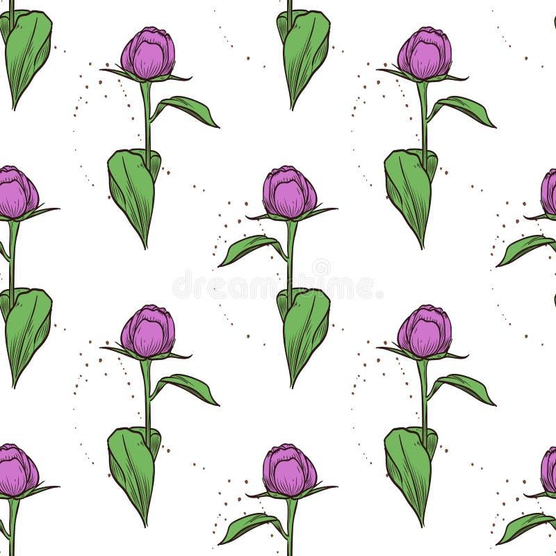 Картина цвета вектора безшовная цветков пиона иллюстрация штока