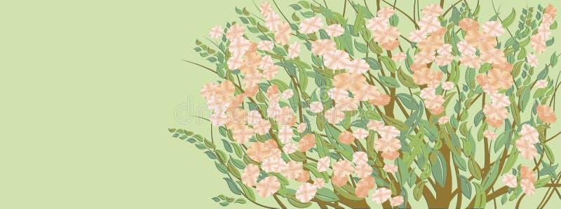 картина цветения иллюстрация вектора