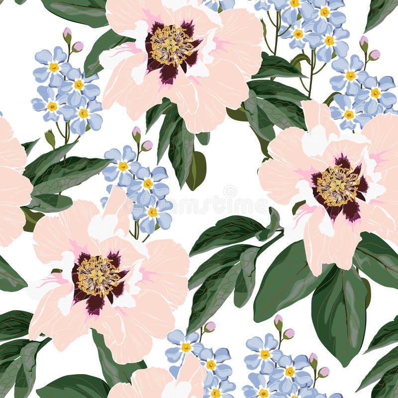 Картина цветка безшовная с красивыми цветками пиона и незабудки orangey на белом шаблоне предпосылки иллюстрация штока