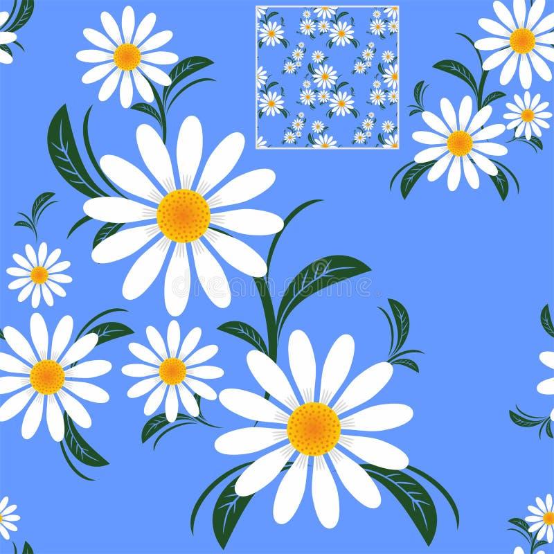 Картина цветка безшовная с Camomiles на сини бесплатная иллюстрация