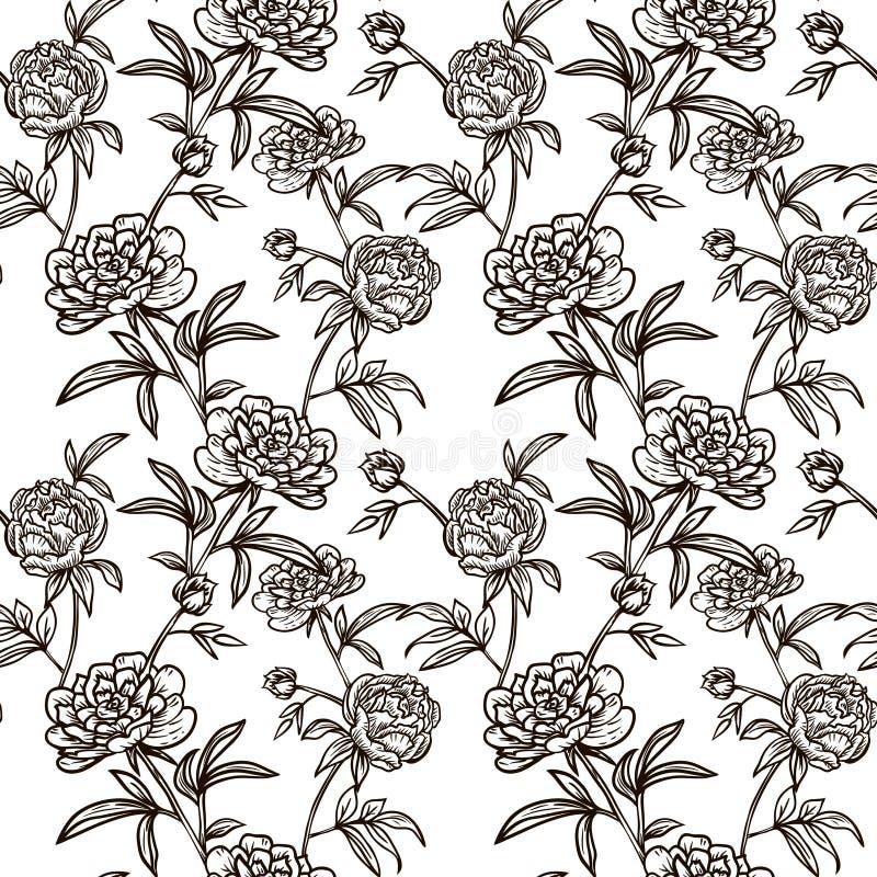 Картина цветка безшовная с Peonies иллюстрация штока