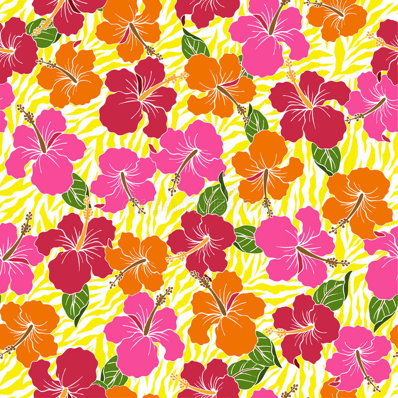 Картина цветка гибискуса иллюстрация штока