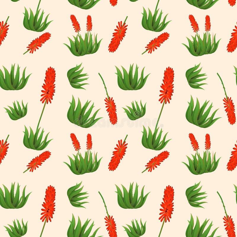 Картина цветка vera алоэ безшовная бесплатная иллюстрация