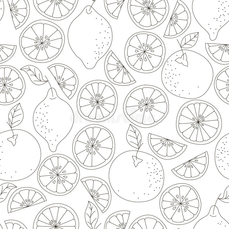 картина цитруса безшовная Предпосылка вектора плодоовощ Черно-белая предпосылка с лимоном и апельсином Естественный и здоровый иллюстрация вектора