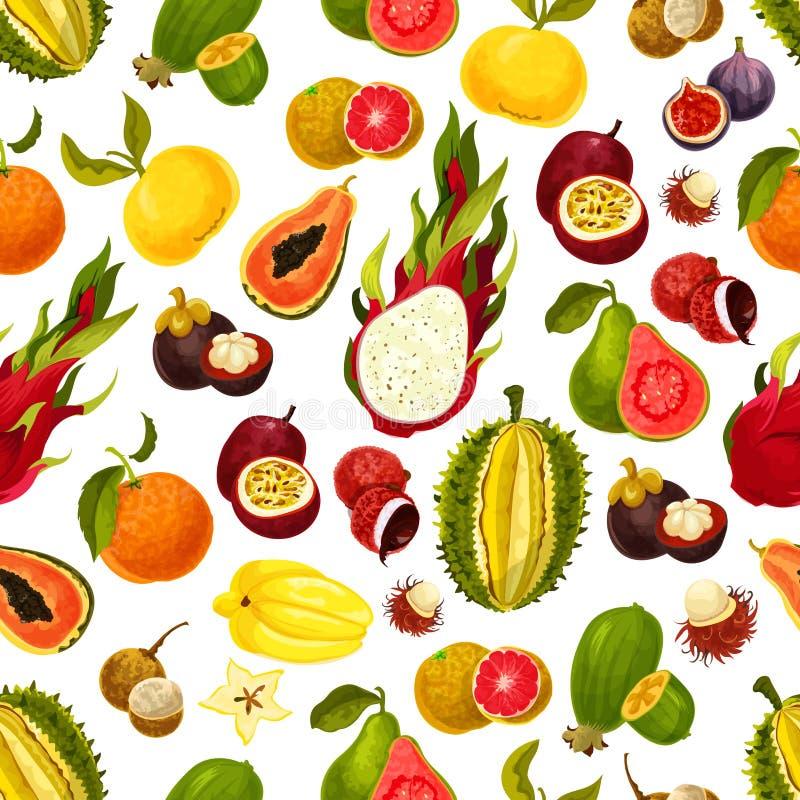 Картина экзотического вектора тропических плодоовощей безшовная иллюстрация штока