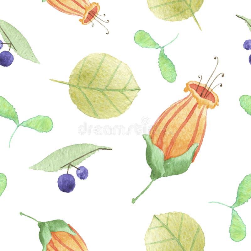 картина ягоды флористическая стоковые фото
