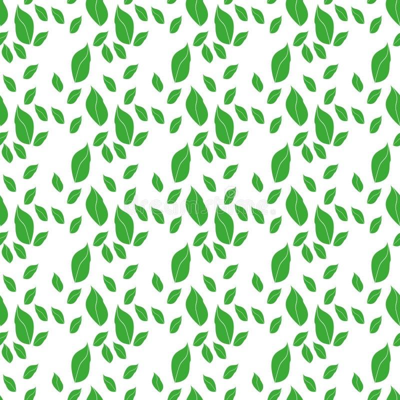 Картина Aepeating листьев arugula на светлой предпосылке сделанной в стиле мультфильма плоском иллюстрация вектора